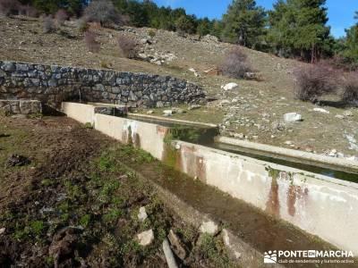 Valle Iruelas- Pozo de la Nieve; entre amigos madrid amigos en madrid alpujarras granadinas bosque d